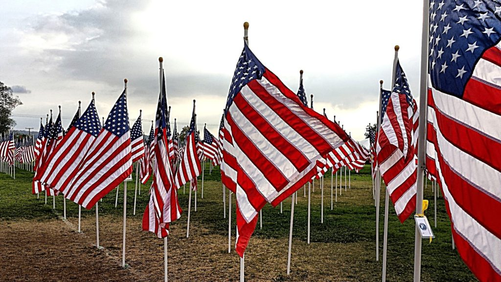 Rows of American Flags on a field, blowing in the wind.