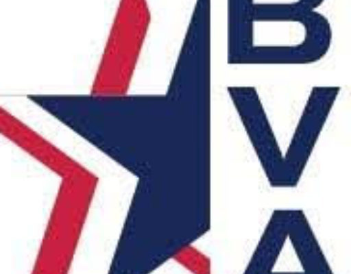 red, white, and blue star with initials B V A